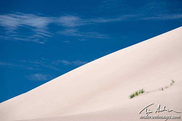 Featured Photo: Dune and Sky