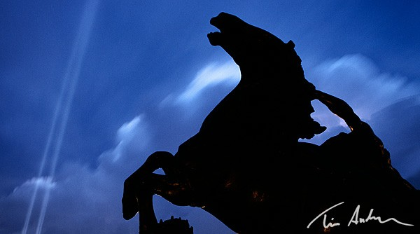 Featured Photo: Plaza Horse and Spotlight